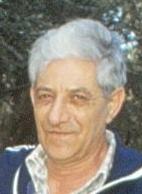 יהודה שטיינווג